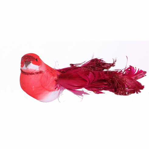 "6"" Curly Feather Bird <br>12 Pieces/Box"