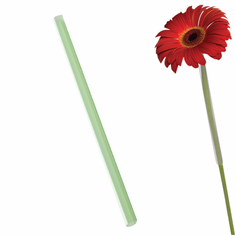 Flower Stem Support