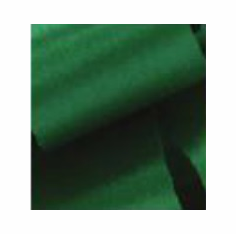 McGinley Mills <br>Satin Ribbon <br>Holiday Green <br>Assorted Sizes