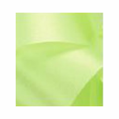 Satin Ribbon <br>Lime <br>Assorted Sizes