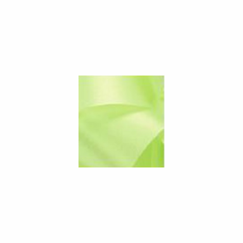 McGinley Mills <br>Satin Ribbon <br>Lime <br>Assorted Sizes