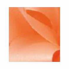 McGinley Mills <br>Satin Ribbon <br>Peach <br>Assorted Sizes