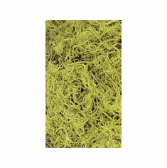 Spanish Moss - 2.4LB <br>Chartreuse