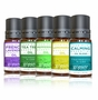 Essential Oils Top 5 Set by goPure