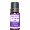 French Lavender Essential Oil 10ml