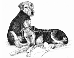 """Airedale Terrier """"Puppies on a Blanket"""" Limited Edition Print"""