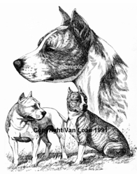 """American Staffordshire Terrier """"Group"""" Limited Edition Print"""