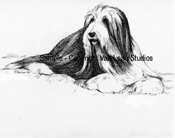 "Bearded Collie ""Ready for a Nap"" Limited Edition Print"