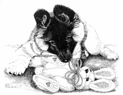 """Belgian Tervuren """"Puppy and Teddy""""  Limited Edition Print"""