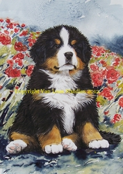 """Bernese Mountain Dog """"Puppy and Poppies"""""""