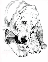"Bloodhound ""Love My Chewies"" Limited Edition Print"