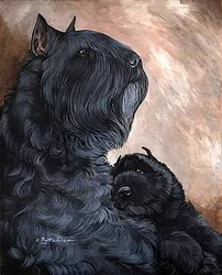 "Bouvier de Flandres ""Mom and Pup"""