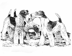 "Fox Terrier Wire ""A Little Spar"""