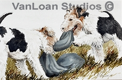 """Fox Terrier """"Wire Fox Puppies Playing"""""""