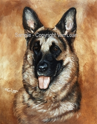 "German Shepherd ""Head Study"""