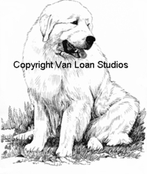 """Great Pyrenees """"Sitting"""""""