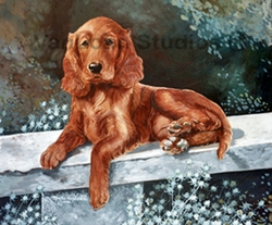 "Irish Setter ""Puppy on a Bench"""