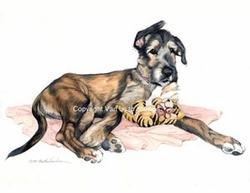 "Irish Wolfhound "" Puppy with Tiger Toy"""