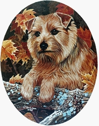 "Norfolk Terrier ""Autumn Oval"""