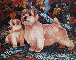 "Norfolk Terrier ""Autumn Romp"""