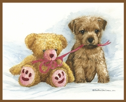 "Norfolk Terrier ""Puppy and Teddy"""