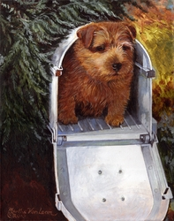 """Norfolk Terrier """"Special Delivery"""""""