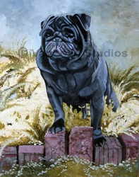 "Pug ""Black on Bricks"""