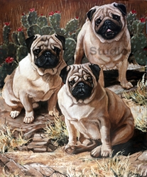 "Pug ""Pugs And Cactus"""