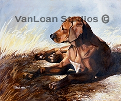 "Rhodesian Ridgeback ""Puppy In The Grass"""