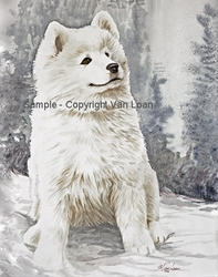 """Samoyed """"Puppy In The Snow"""""""
