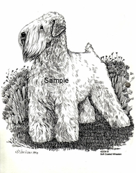 "Soft Coated Wheaten Terrier ""Standing"""