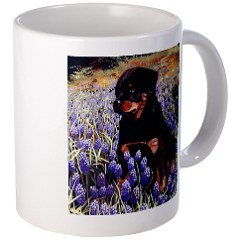 Visit our Gift shop Click here