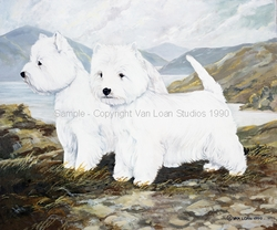 """West Highland White Terrier """"Cornell Dogs"""""""