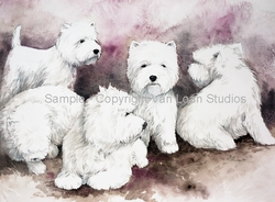 """West Highland White Terrier """"Group of Five"""""""