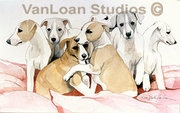 """Whippet """"Puppy Pack"""""""