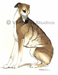 "Whippet ""Sitting Pretty"""