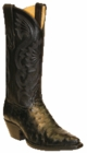 Star Boots for Women Black Full Quill Ostrich Leather Boots W9227