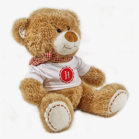 Initial Personalized Plush Teddy Bear