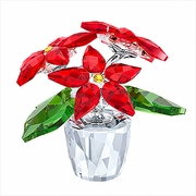 Poinsettia Small