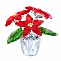 (SOLD OUT) Poinsettia Small