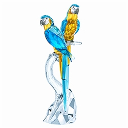 NEW<br>Macaws