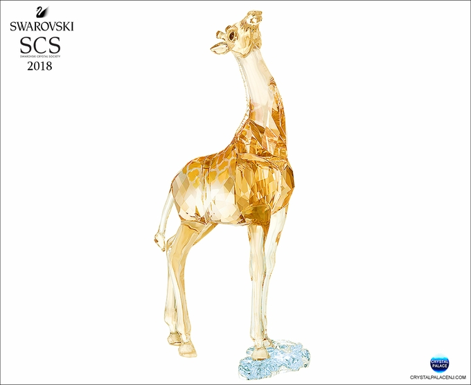 SCS Annual Edition 2018 Giraffe Baby