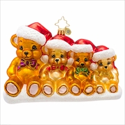 Beary Together Radko Ornament