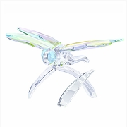 (SOLD OUT) Dragonfly