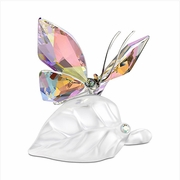 (SOLD OUT) Sparkling Butterfly