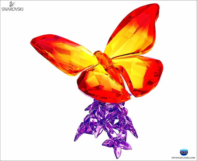 (SOLD OUT) Butterfly on Flowers