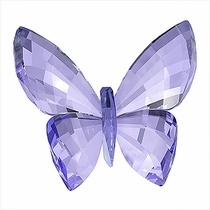 (SOLD OUT) Butterfly, Provence Lavender
