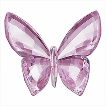 (SOLD OUT) Butterfly, Rosaline