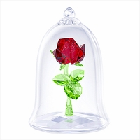 Disney Enchanted Rose