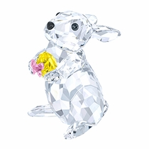 Rabbit with Yellow Easter Egg